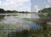 Wyprzedaż działek rekreacyjnych nad jeziorem. miniaturka 9