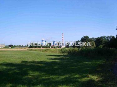 Opole Brzezie, 140 000 zł, 39.12 ar, inwestycyjna