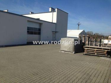Bydgoszcz 13 750 zł 550 m2