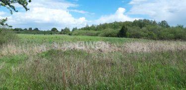 Krzywin, 100 000 zł, 4.59 ha, zalesiona