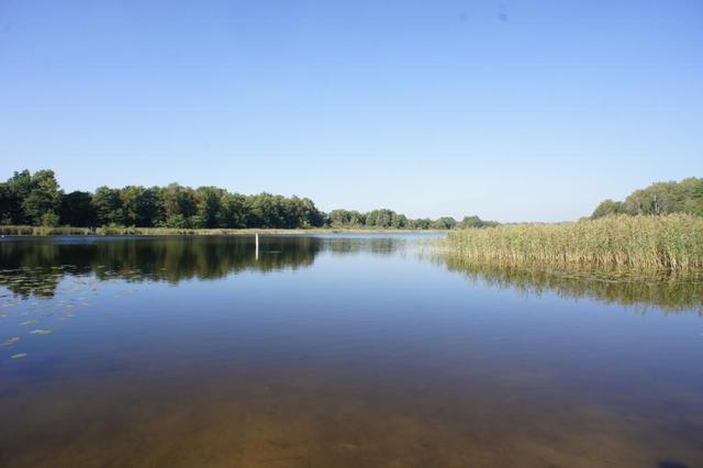 Kup tanio działkę rekreacyjną nad jeziorem - zdjęcie 1