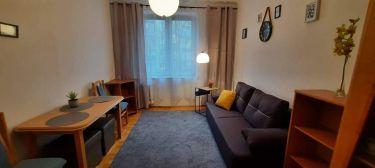 Na wynajem mieszkanie 2-pokojowe w centrum miasta.