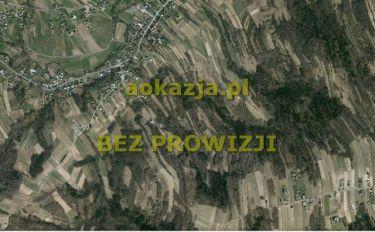 35ar działka las, Chechły, Ropczyce
