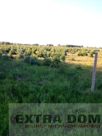 Nowogard, 249 000 zł, 5 ha, prostokątna