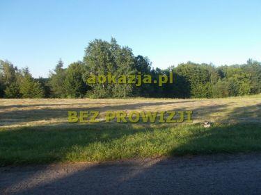 44ar działka rolno budowlana Zalasowa, gm. Ryglice