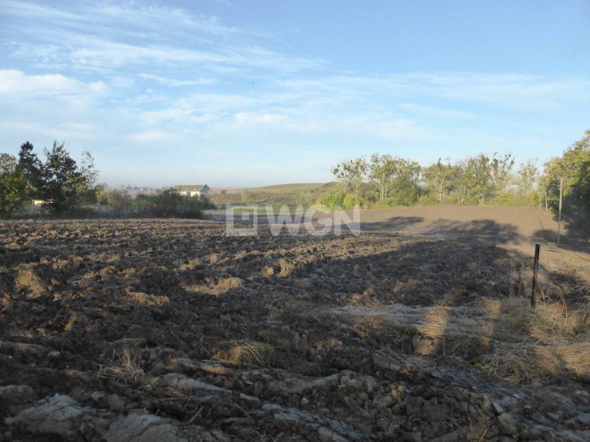 Sztum, 80 000 zł, 1.32 ha, bez nasadzeń - zdjęcie 1