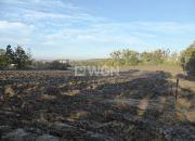 Sztum, 80 000 zł, 1.32 ha, bez nasadzeń miniaturka 1