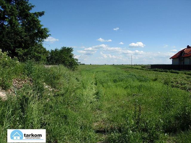 Raszyn, 2 500 000 zł, 1 ha, rolna - zdjęcie 1