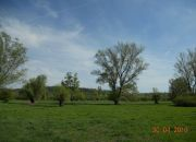 Kazimierz Dolny, 3 500 zł, 93.48 ha, bez prowizji miniaturka 14