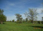 Wojszyn Stary Wojszyn, 3 500 zł, 93.48 ha, bez prowizji miniaturka 7