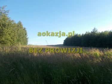 33ar działka rolna Zalasowa, gm. Ryglice