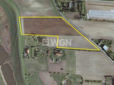 Kwidzyn, 105 000 zł, 1.75 ha, zalesiona
