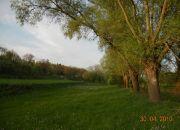 Wojszyn Stary Wojszyn, 3 500 zł, 93.48 ha, bez prowizji miniaturka 25