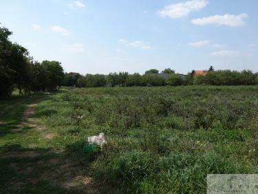 Łódź Doły, 7 999 000 zł, 3.01 ha, płaska