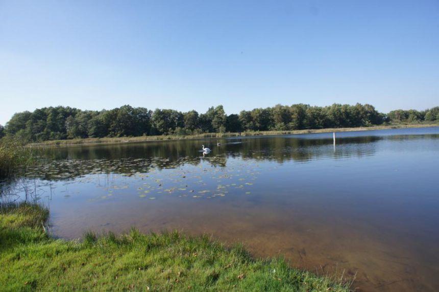 Działka rekreacyjna nad jeziorem - zdjęcie 1