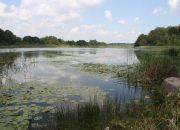 Działka rekreacyjna nad jeziorem. miniaturka 15
