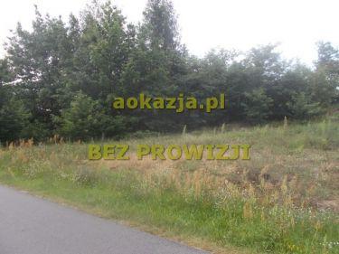 44ar działki rolno budowlane, Niwiska, Kolbuszowa