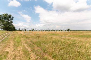 Rurzyca, 1 999 000 zł, 8.58 ha, przyłącze wodociągu