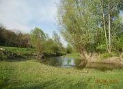 Wojszyn Stary Wojszyn, 3 500 zł, 93.48 ha, bez prowizji miniaturka 23