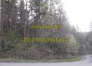 3,65ha las gmina Kołaczyce miniaturka 5