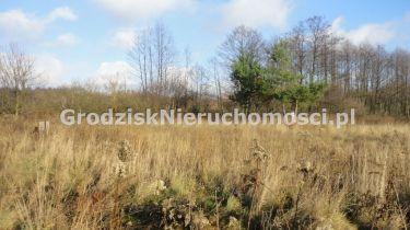 Budy-Grzybek, 150 000 zł, 10.91 ar, woda w drodze