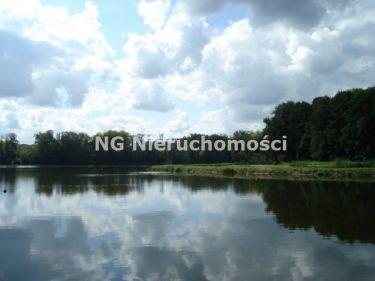 Stare Czarnowo, 2 000 000 zł, 8.09 ha, przyłącze elektryczne