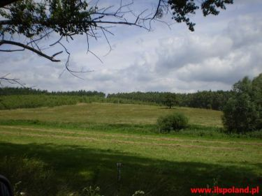 Lisie Pole, 200 000 zł, 2.32 ha, rolna
