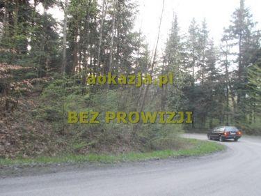 3,65ha las gmina Kołaczyce