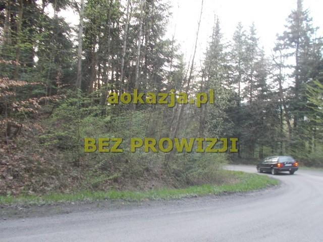 3,65ha las gmina Kołaczyce - zdjęcie 1