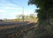 Sztum, 80 000 zł, 1.32 ha, bez nasadzeń miniaturka 2