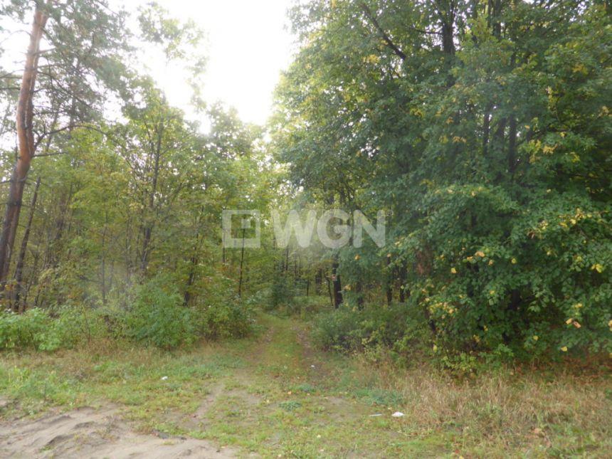 Nowa Wieś, 150 000 zł, 2.7 ha, zalesiona - zdjęcie 1