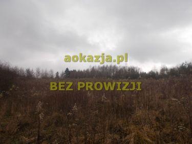 Widokowa 24ar działka rolna Bieździedza