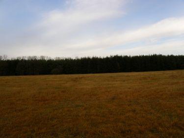 Redliny, 340 000 zł, 79.4 ar, rolna