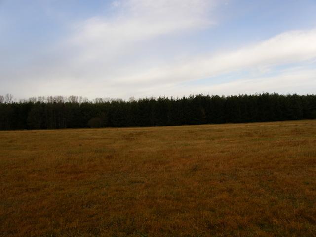 Redliny, 340 000 zł, 79.4 ar, rolna - zdjęcie 1