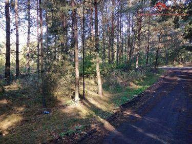 Działka w Czarnym Błocie, 14 km od Torunia