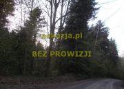 3,65ha las gmina Kołaczyce miniaturka 2