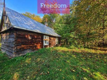 Drewniany domek na pięknej działce pośród lasu