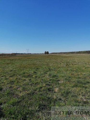 Żdżary, 494 000 zł, 4.94 ha, płaska