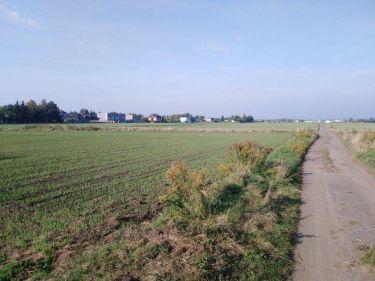 Działka rolna Starołęka