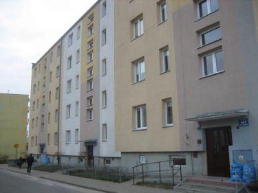 Mieszkanie - Elbląg