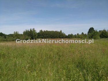 Budy-Grzybek, 110 000 zł, 10 ar, woda w drodze